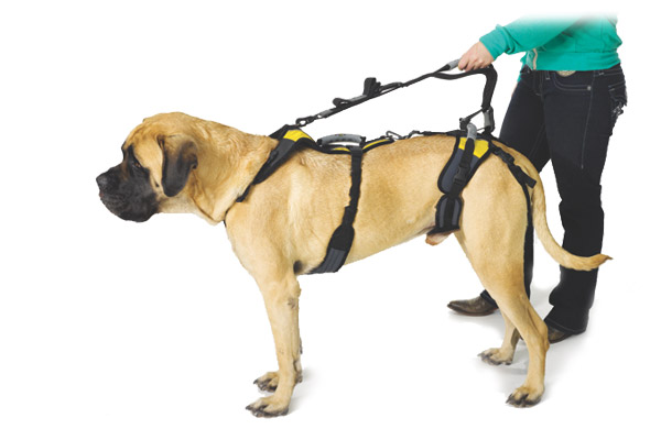 Help Em Up Dog Harness